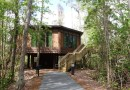 Treehouse Villas at Disney's Saratoga Springs Resort and Spa