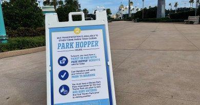 Mi experiencia al usar el nuevo Park Hopping para visitar los 4 parques de Disney World