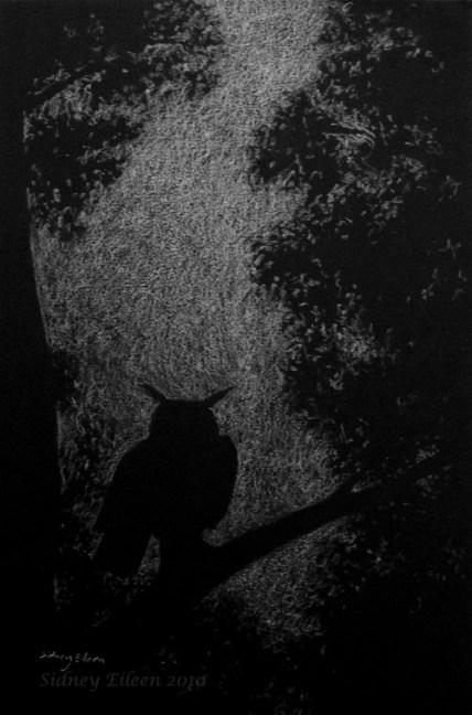 Title: In the Still of Night, Artist: Sidney Eileen, Medium: white pencil on black paper