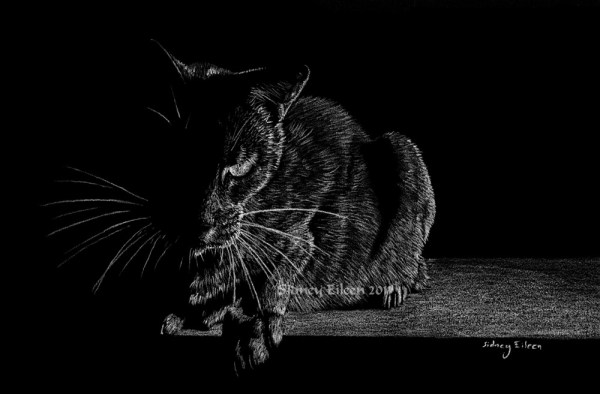 Title: Ready, Artist: Sidney Eileen, Medium: white pencil on black paper