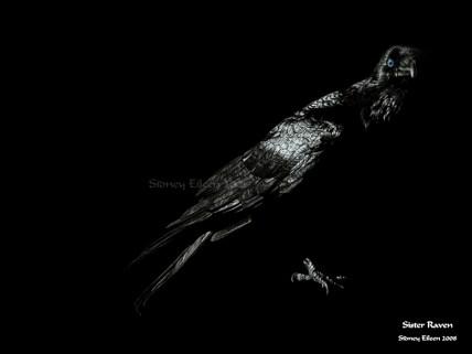 Title: Sister Raven, Artist: Sidney Eileen, Medium: colored pencil on black paper