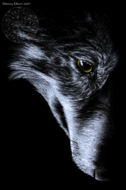 Title: The Right Side, Artist: Sidney Eileen, Medium: colored pencil on black paper