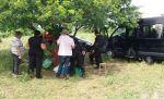 Equipes de policiais em buscas por quadrilha de assaltantes