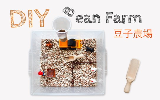 DIY 豆子農場 DIY Bean Farm