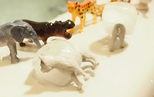 DIY 洗澡玩具-動物冰塊 DIY Animal Ice Cube