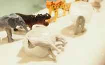 DIY 洗澡玩具 -動物冰塊 DIY Animal Ice Cube