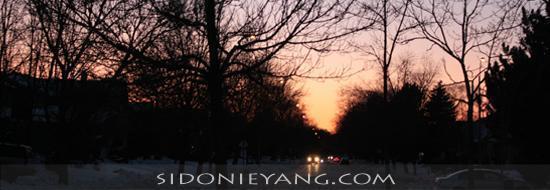 多倫多夕陽