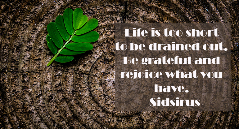 quote sidsirus