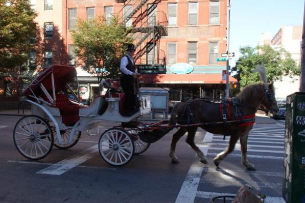 Pferdekutsche auf den Weg zur Arbeit in den Central Park