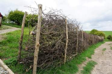 Zaun Wanderweg Dover