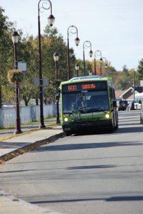Bus Linie 800