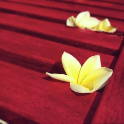 Fleurs - Une villa à Bali - Hôtel, Bali