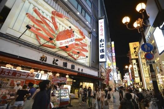 DSC_6633 - Virée à Osaka - restos, japon, asie, a-faire