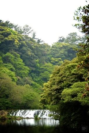 DSC_0443 - L'île de Jeju - coree-du-sud, asie, a-faire