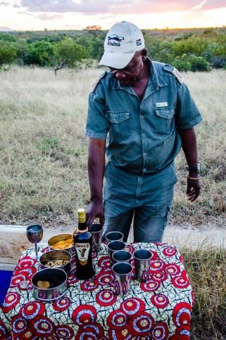 AMP-210 - Au coeur de la savane africaine - afrique-du-sud, afrique, a-faire