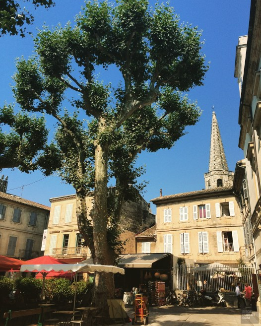 IMG_3788 - Belle Provence - france, europe, featured, destinations