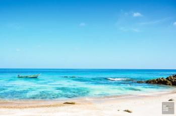 socotra-4733 - L'île de Socotra, le dernier paradis perdu! - yemen-asie, asie, a-faire