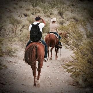 _DSC0598 - L'Arizona de A à Z - etats-unis, featured, destinations, arizona