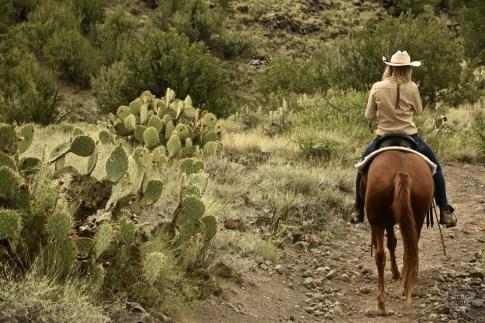 DSC_1829 - L'Arizona de A à Z - etats-unis, featured, destinations, arizona