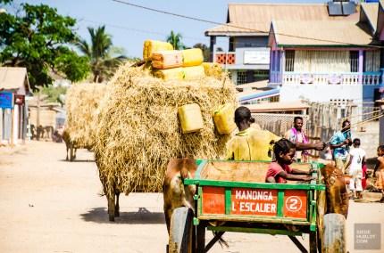 MadaRN34-7344 - Road trip à Madagascar (Partie 2) - rode-trip, madagascar, featured, destinations, afrique, a-faire