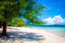 arbre plage - Un paradis secret, Koh Rong Samloem, Cambodge - Asie, Cambodge