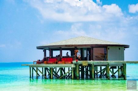 bar central - Centara ras fushi - Les Maldives, le grand luxe en plein ocean Indien. - Asie, Maldives