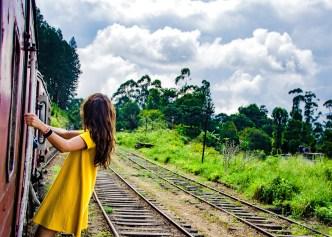 train dans le vent - The, train et pont - Sri Lanka, au cœur de l ile - Asie, Sri Lanka