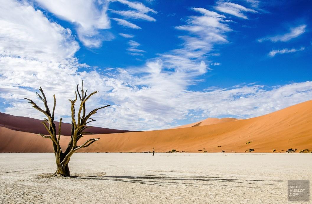 desert namibie