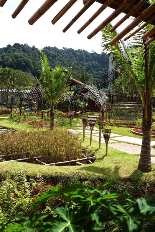 Plantations du moment - De la ferme à la table - Krabi et son unique resort écologique - Asie, Thaïlande