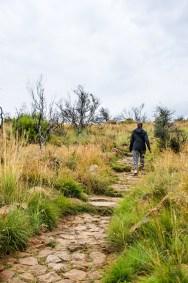 randonnee pedestre 2 - randonnee en montagne - Dose d adrenaline en Afrique du Sud - Afrique, Afrique du Sud