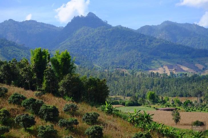 Vue sur les montagnes - Les Excursions - Pai - Asie, Thaïlande