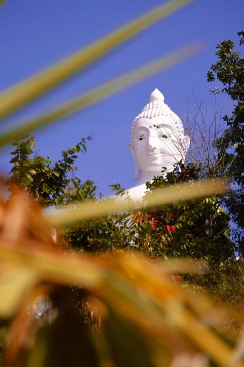 Taille impressionnante et vue magnifique - Les Excursions - Pai et la fraicheur des montagnes - Asie, Thaïlande