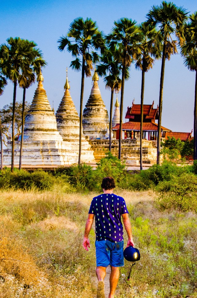 stupas et palmiers - Bagan, capitale de l ancien royaume de Pagan - A la recherche du temple perdu Bagan, Myanmar - Asie, Myanmar