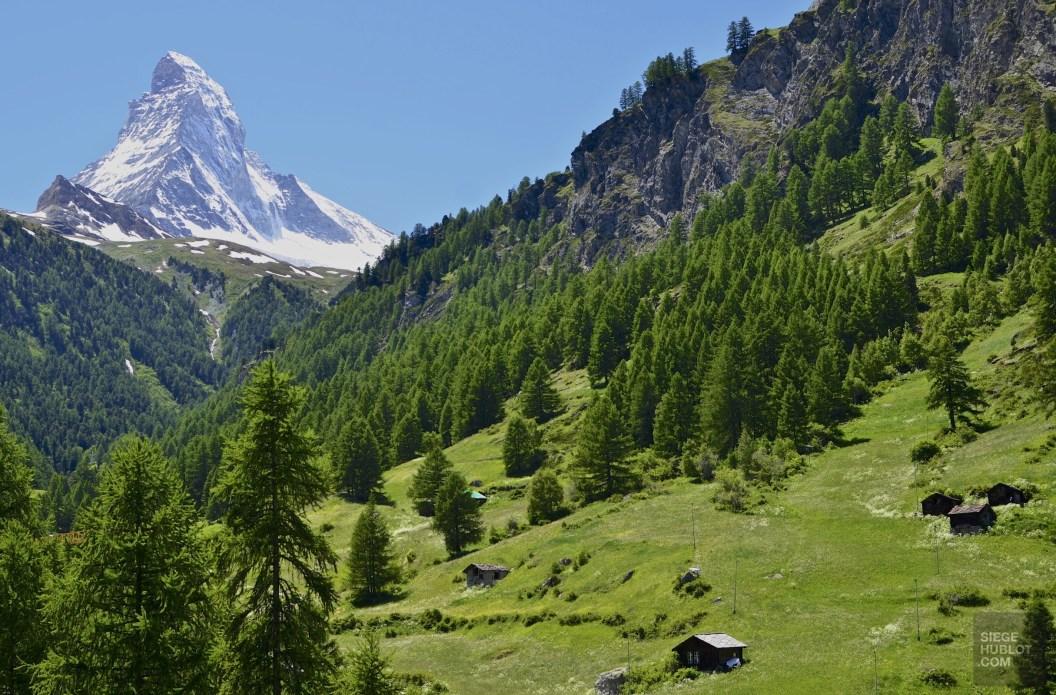 Le Matterhorn en été - Zermatt, Valais - Zermatt, la quintessence de la Suisse - Europe, Suisse