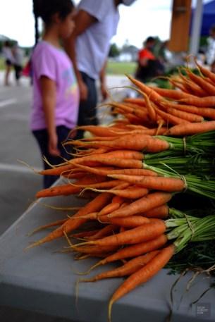 Légumes - La Vallée-de-l'Or - Une virée en Abitibi-Témiscamingue - Amérique du Nord, Canada, Québec