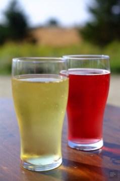 Cidre classique et à la baie de sureau - Le verger à Ti-Paul - Balade en Beauce - Amérique du Nord, Canada, Québec, Chaudière-Appalaches