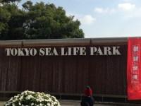 子連れで葛西臨海水族園に行ってきた!子供は水族館より動物園が好き