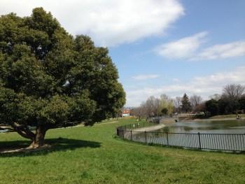 越谷市の出羽公園は大きな遊具と緑が多く子連れに最適!貨物列車も見れる