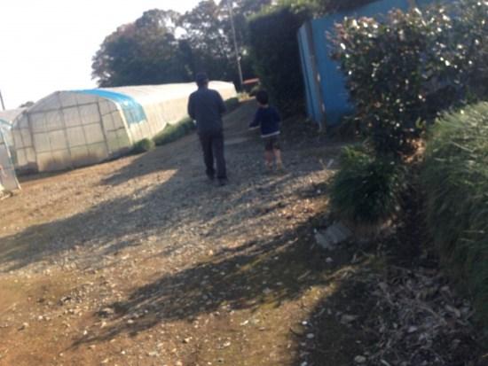 農道を歩いている画像