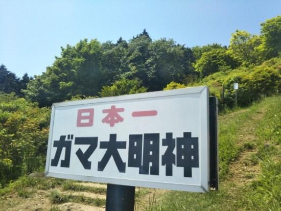 筑波山のガマ
