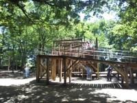 内牧公園の無料で遊べるアスレチックが楽しい!緑が多くて快適