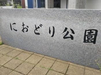 三郷中央駅前の「におどり公園」に行ってきた。子供を思いっきり遊ばせることができる公園