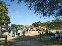 三郷公園は子供向けの遊具が充実!こどもの砦が楽しい