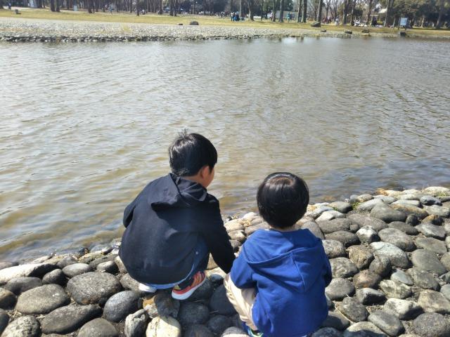 水元公園は遊具が少ないけど大きな広場で自転車やボール遊びができる
