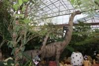 子供たちが大好きなパイナップルパークに恐竜エリアができていた