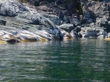 Quadra Island, August 2015