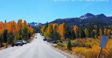 Fall color hwy 88 Alpine County