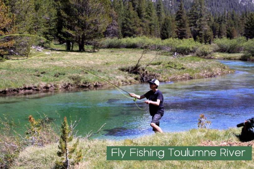 Fly Fishing Tuolumne Lyell Canyon