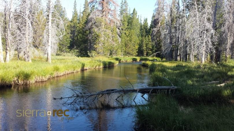 Eldorado National Forest - Caples Creek