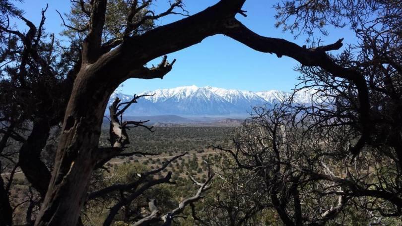 Carson Valley Sierra Front 2016